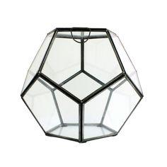 Faceted Terrarium