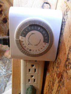 Winter proofing your chicken coop.