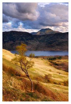 Scotland - Loch Lomond National Park, view over Loch Arklet in to Ben Lomond peak