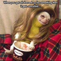 Dump A Day Funny Pictures Of The Day - 120 Pics
