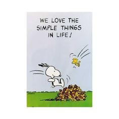 Images Peanuts quotes | Peanuts: We Love The Simple Things In Life!