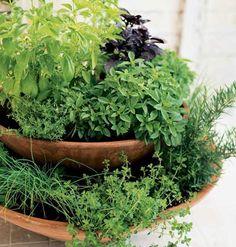 Two-tiered herb garden