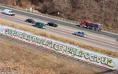 Canadian graffiti. Gangsta!
