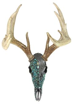One Kings Lane - VMF - Wall Decor - Deer Skull w/ Turquoise