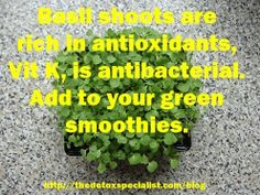 Micro green herbs are ideal to add to your detox green smoothies.