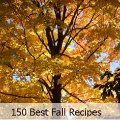 150 Best Fall Recipes #autumn