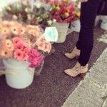 Flower Pots, gorgeous.