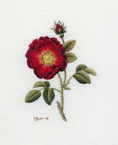 "Who doesn't love an old fashioned rose? Trish Burr, an embroidery designer, ""needlepoints"" great designs."