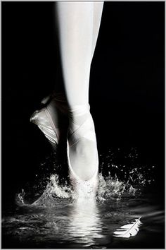 Impressions of Swan Lake, the classic Tchaikovsky ballet. I  Photo of the Day: August 09, 2012   Gabor Dvornik (Szödliget, Hungary); Photographed March 2011, Budapest, Hungary