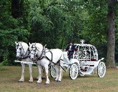 My Cinderella Carriage: )