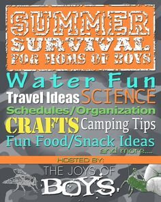 Summer Survival for Moms of Boys - Daily Summer Activities designed for moms of boys with crafts, water fun, science, camping tips, fun food and more.