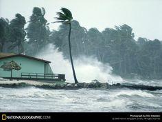 Florida, Hurricane Winds, 1973