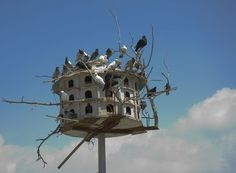Google Image Result for http://img.ehowcdn.com/article-new/ehow/images/a07/da/so/decorate-bird-houses-grapevines-800x800.jpg