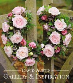 David Austin Roses - Cut Roses - Rose Bouquets - Buy online - David Austin Roses