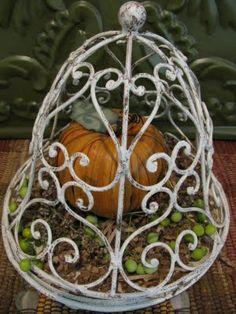 Sweet little pumpkin in a metal cloche