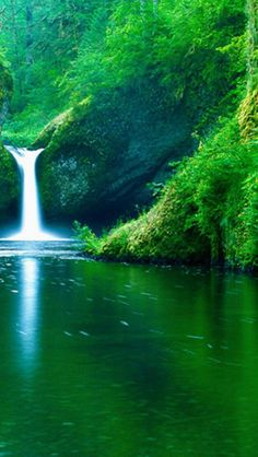 Waterfalls, Nature how peaceful!