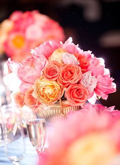 gorgeous coral peach pin flowers