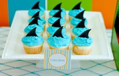 "cute shark cupcakes, adorable summer ""surf's up"" kids party"