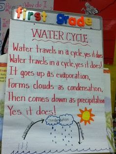 Water Cycle Song  http://tekyteach.blogspot.com/2011/09/this-and-that-in-first-grade_20.html