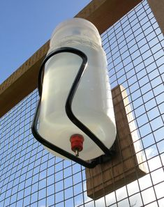 Chick's-eye view of brooder bottle nipple waterer using a bike's water bottle holder