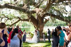 ceremony under a tree | Laura Yang #wedding