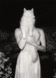 Masaaki Miyazawa - Once Upon a White Night, September 15, 1981