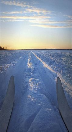 Silent moment by Visit Finland, via Flickr