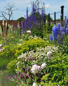 The beautiful walled garden borders at Attingham Park.  Thank you to Isobel Evans for sharing this photo with us.