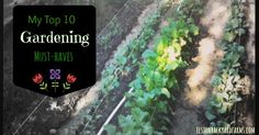 garden item, 10 garden, mud boot, top 10, awesom mud, garden musthav, garden idea