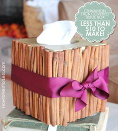 Cute craft idea: cinnamon stick tissue box -I would use something other than purple lol