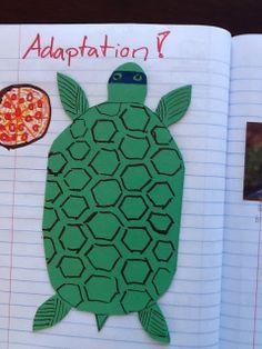 Interactive Science Notebook   animal adaptations