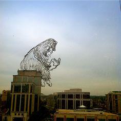 Great Ape-spectations. via windoodles.tumblr.com