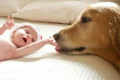 Cute Baby and Dog