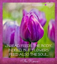 Flowers feed soul quote via www.Facebook.com/IncredibleJoy