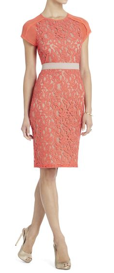 Coral lace pencil dress