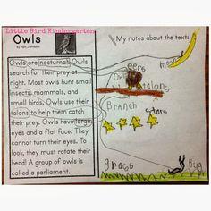Little Bird Kindergarten: My Products