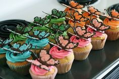 butterfly cupcakes 13 by annieseats, via Flickr