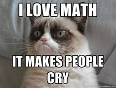 Grumpy Cat loves math