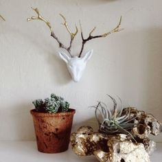 Make your own tiny deer sculpture using air dry clay, gold leaf, and twigs. Easy to follow tutorial.