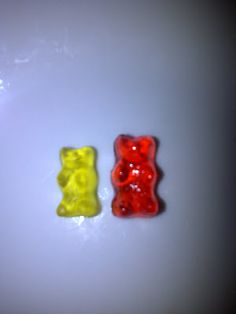 "Drunken Gummy Bears!    Regular gummy bear on left, drunken gummy bear on right.    ""*Please note this recipe includes alcohol and is intended only for adults over the age of 21. Please don't eat these and drive, operate heavy machinery or text."""