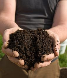 how to amend your soil...