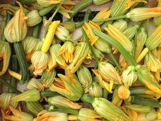 Edible flowers in your garden