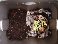 Learn to compost to reduce organic waste in landfills.