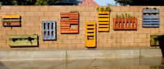 David Walrod of Urban Dirt; pallet garden