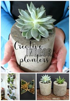 Cute indoor planter