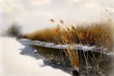 winter, country
