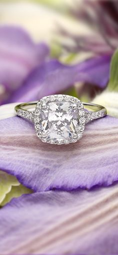18K White Gold Harmony Ring