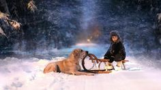 #child with #dog on #seligh in #snow at #xmas #Lettersfromsanta http://www.fatherchristmasletters.co.uk/letter-from-santa.asp