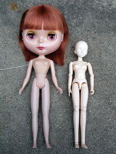 Obitsu Body