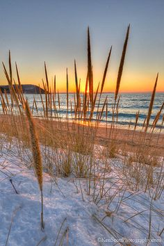 Lake Michigan ... Leland sunset ~ beach grass view, Whaleback Point, Michigan by Ken Scout